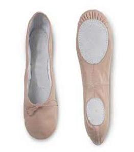 Sepatu Danskin
